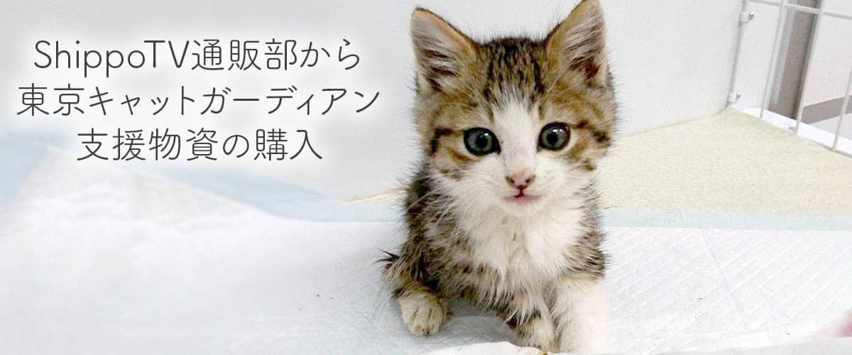 東京キャットガーディアン支援物資